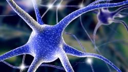 2014 год в неврологии: разочарования и новые надежды