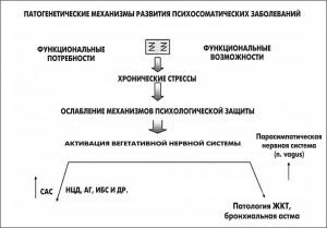 РисБез имени-1