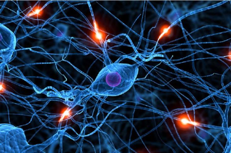 Дистония Нейроциркуляторная фото