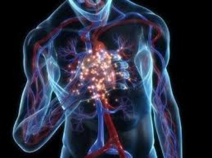 статины ишемической болезни сердца