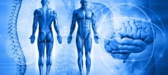 Стимуляция спинного мозга как безопасный и доступный метод лечения выраженной СН – начальный опыт клинического применения