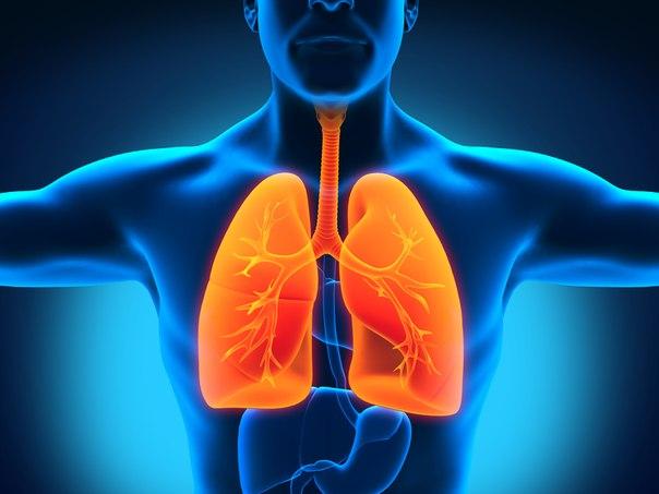 Легочные эозинофилии: эозинофильная пневмония