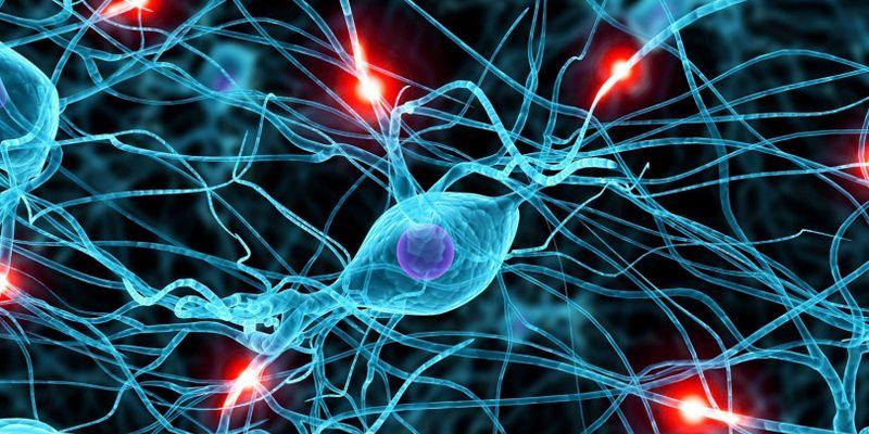Применение мезенхимальных стромальных клеток  костного мозга в терапии тяжелой ишемической СН