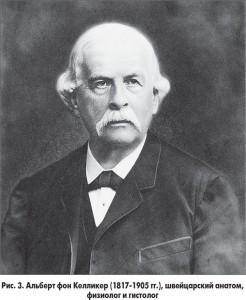 Albert fon Kelliker