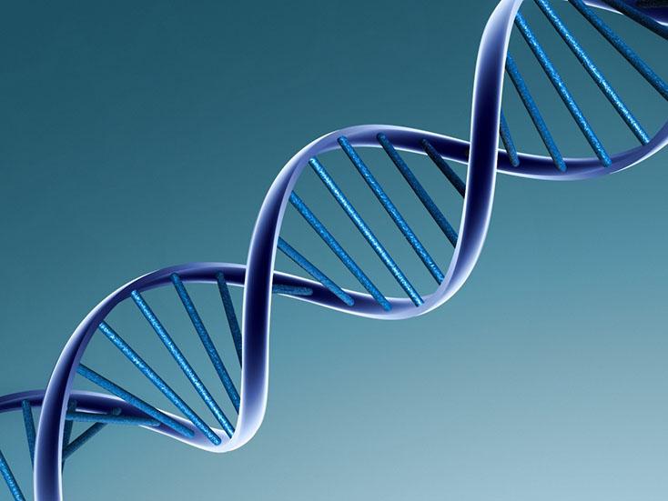 Влияние антибиотиков на экспрессию генов, ответственных за лекарственную устойчивость, и микрофлору кишечника