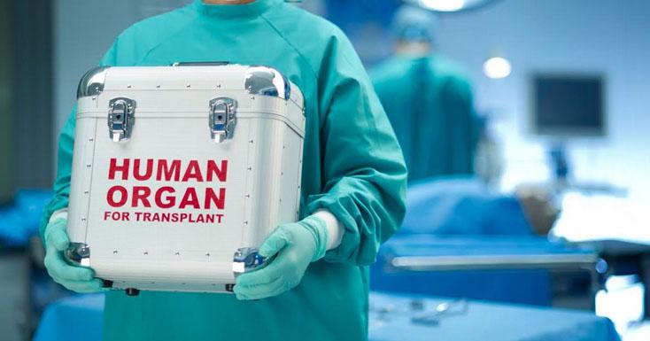 Парламент розглянув питання автономізації закладів охорони здоров'я та трансплантації органів