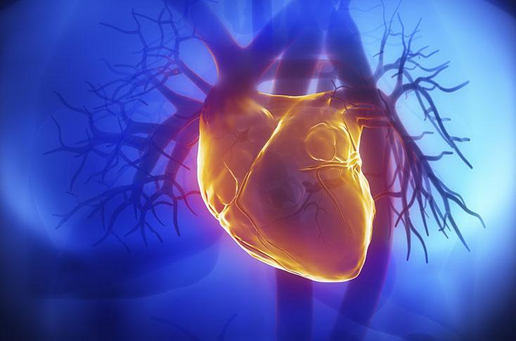 Прием макролидов связан с повышением кардиоваскулярного риска