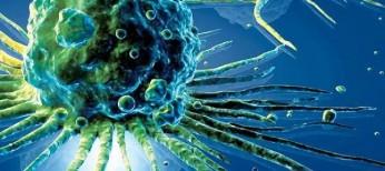 Новый взгляд на статистический феномен Уилла Роджерса при раке желудка