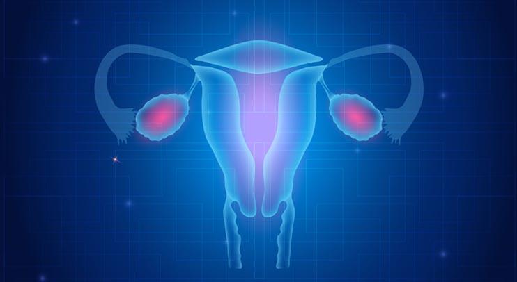 Влияние терапии каберголином и метформином на регулярность менструального цикла и андрогенную систему у женщин с синдромом поликистозных яичников и гиперпролактинемией