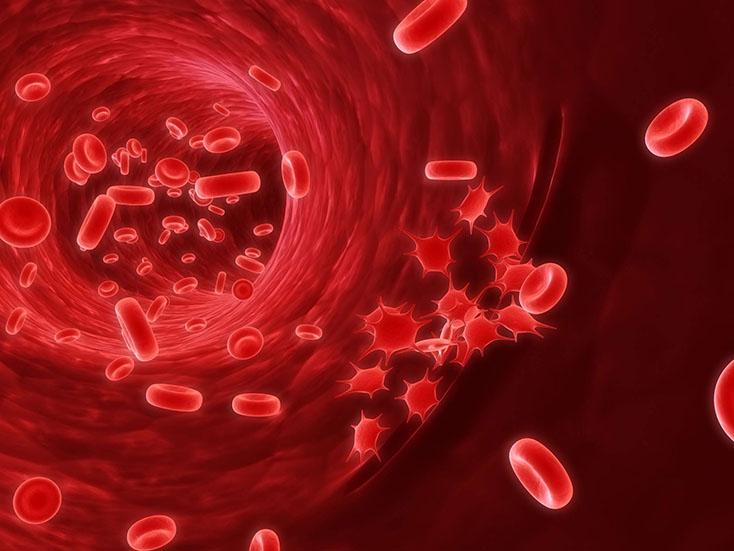 Американская коллегия кардиологов иАмериканская кардиологическая ассоциация обновили рекомендации относительно двойной антитромбоцитарной терапии
