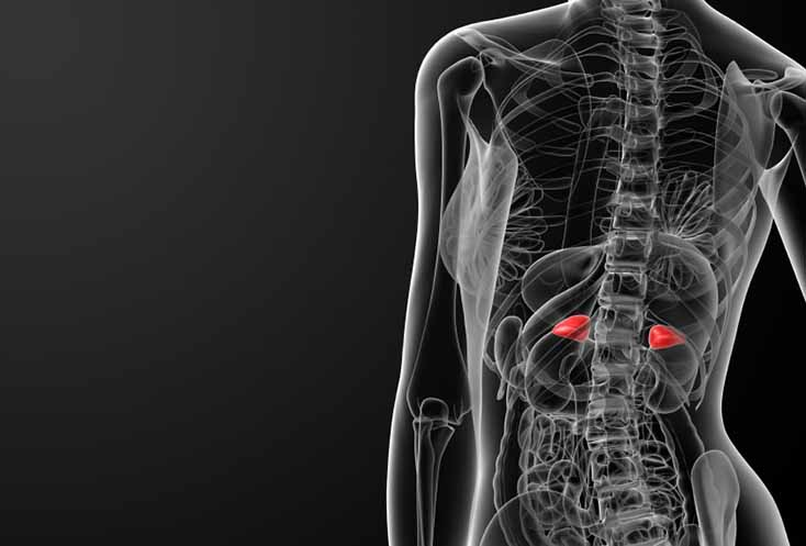 Алгоритм діагностики та тактики ведення пацієнтів з інциденталомами надниркових залоз