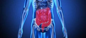 Патогенетическая роль кишечного дисбиоза в развитии ожирения, инсулинорезистентности и сахарного диабета 2 типа