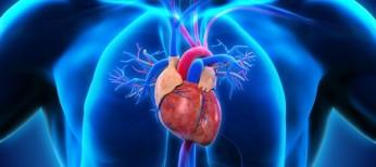 Ангиолейомиофиброма трехстворчатого клапана: случай диагностики и хирургического лечения