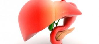Хронічний панкреатит: загадковий процес невизначеного патогенезу