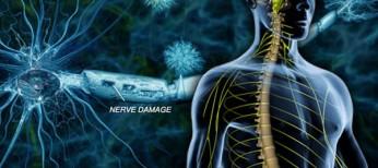 Розсіяний склероз: історичний нарис і науково-практичний розвиток проблеми