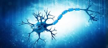 В США появится новый препарат для лечения рассеянного склероза