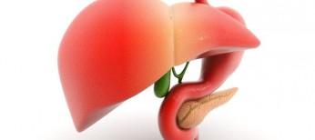 Терапия β-блокаторами ассоциируется соснижением риска развития гепатоцеллюлярной карциномы упациентов сциррозом печени
