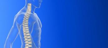 Сучасні принципи лікування ушкоджень хребта