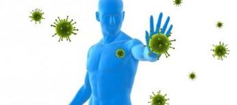 Ингибирование PD-L1 в современной иммунотерапии злокачественных новообразований