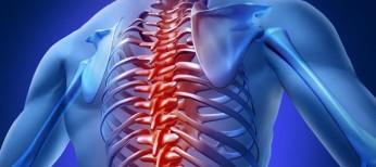 Современные подходы к лечению нейрогенной эректильной дисфункции