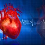 Современные подходы к профилактике и лечению кардиоваскулярных заболеваний