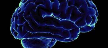 Когнитивные нарушения в практике терапевта и невролога