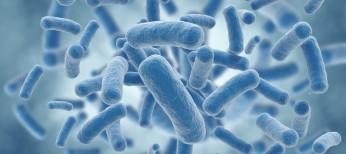 Инновационные антибиотики в практике врача
