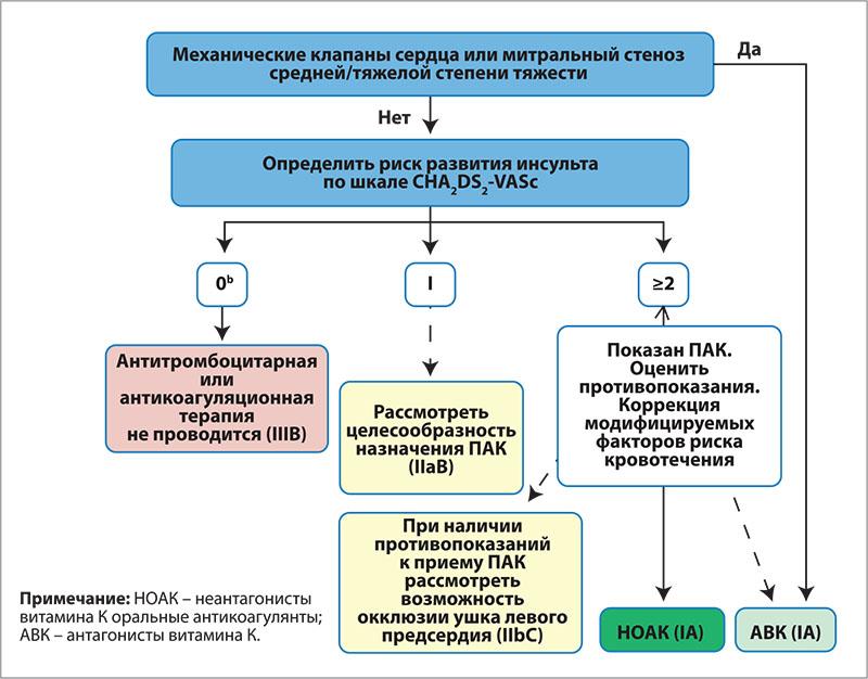 Рис. 3. Профилактика инсульта при ФП