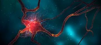 Церебролизин в современной неврологической практике