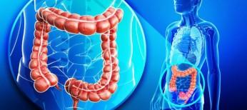 Римские критерии IV: особенности диагностики, клиники и лечения синдрома раздраженного кишечника