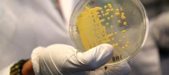 Глобальная распространенность хеликобактерной инфекции: данные нового систематического обзора