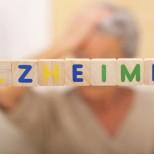 Использование экстракта гинкго билоба в профилактике болезни Альцгеймера