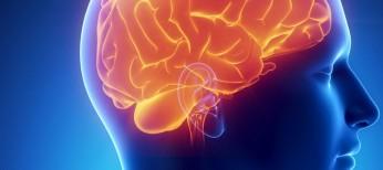 Возможна ли медикаментозная профилактика аденом гипофиза?