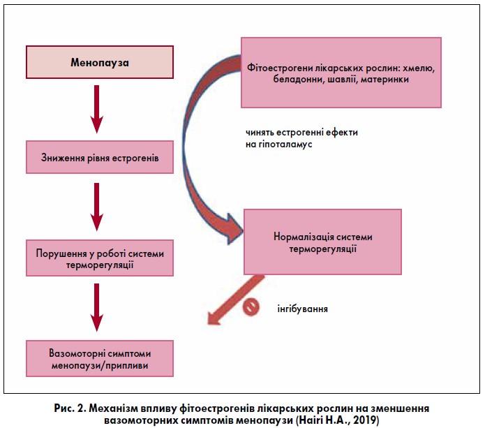 Менеджмент клімактеричного синдрому: природне рішення жіночих проблем